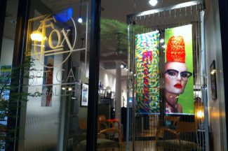Fox Optical & Gallery