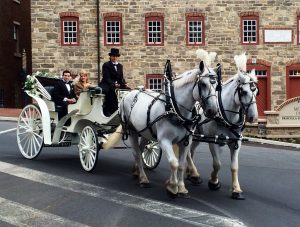 Downtown Bethlehem Carriage Ride Image